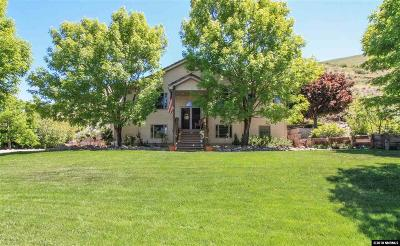 Reno Single Family Home For Sale: 3460 Mario Rd