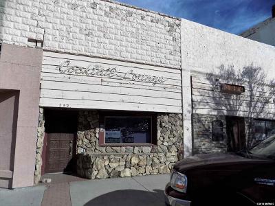 Lovelock Commercial For Sale: 260 Main St
