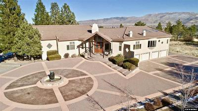 Washoe Valley Single Family Home For Sale: 7390 Bryan Canyon Rd