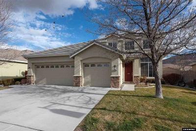 Reno Single Family Home For Sale: 10040 Cascade Falls Dr