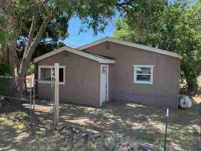 Reno Single Family Home For Sale: 145 Heindel Drive