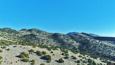 Reno Residential Lots & Land For Sale: Curnow Canyon