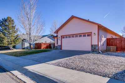 Carson City Single Family Home Active/Pending-House: 985 Sunview