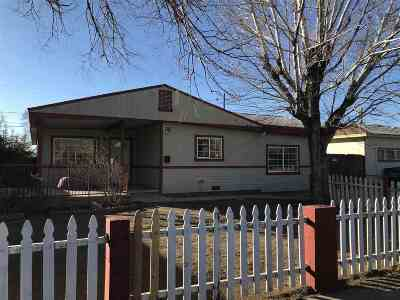 Reno Single Family Home Active/Pending-Loan: 1890 Trainer Way #NV