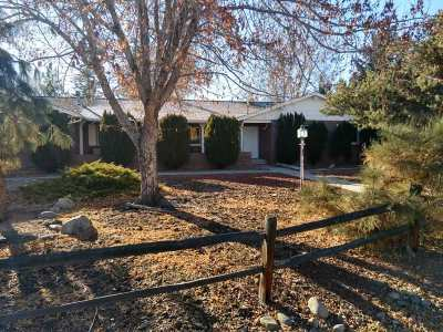 Washoe County Single Family Home Active/Pending-Loan: 13510 South Hills Dr