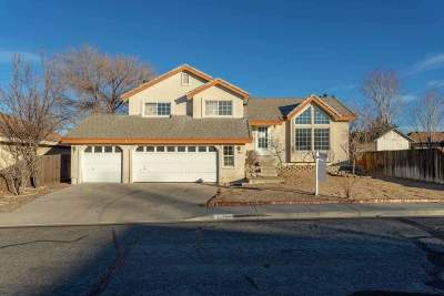 Carson City Single Family Home For Sale: 1425 Chimney Drive