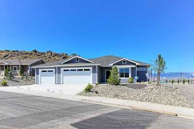 Carson City Single Family Home For Sale: 4080 Hells Bells Rd