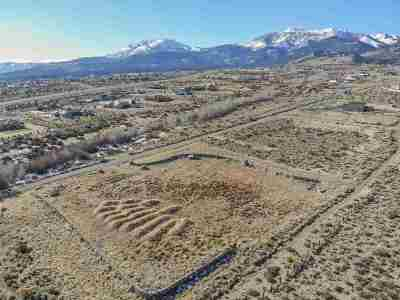 Reno Residential Lots & Land For Sale: Mountain Ranch