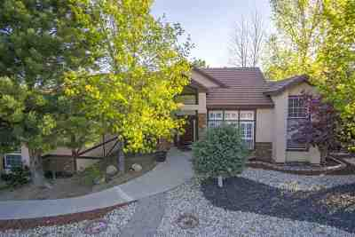 Reno Single Family Home For Sale: 2699 Rodney Drive