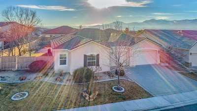 Reno Single Family Home For Sale: 10645 Summer Glen Dr