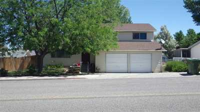 Winnemucca Single Family Home For Sale: 1855 Mizpah St.