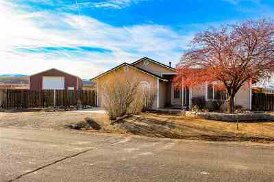 Fernley Single Family Home For Sale: 450 Crimson