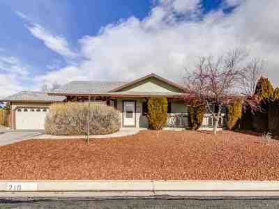 Sparks Single Family Home Active/Pending-House: 210 Mia