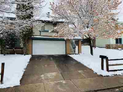 Reno Single Family Home For Sale: 842 Wyoming Avenue
