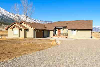 Gardnerville Single Family Home For Sale: 510 Green Acres Dr