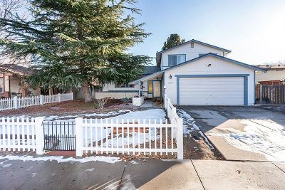 Washoe County Single Family Home For Sale: 1057 Robbie Way