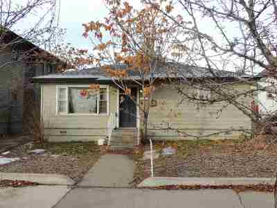 Reno Single Family Home For Sale: 815 Lake Street