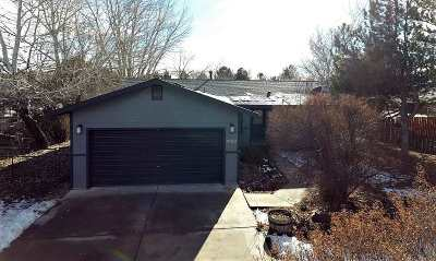 Winnemucca Single Family Home For Sale: 4180 Hardrock Rd.