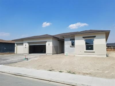 Fernley Single Family Home For Sale: 146 Snowy Plover Way
