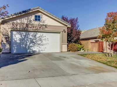 Washoe County Single Family Home For Sale: 9015 Cabin Creek