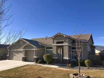 Washoe County Single Family Home For Sale: 7349 Phoenix Drive