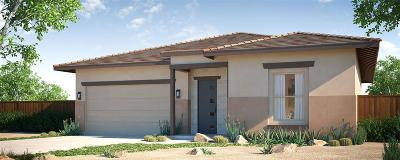 Fernley Single Family Home For Sale: 705 Palomino Dr