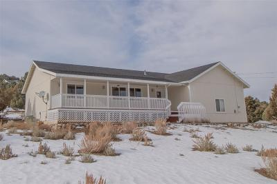 Reno Single Family Home For Sale: 1880 Empire Rd.