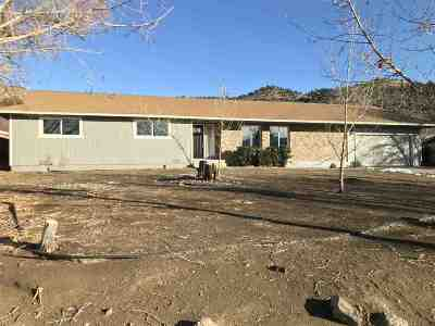 Reno Single Family Home For Sale: 14460 Rim Rock Dr