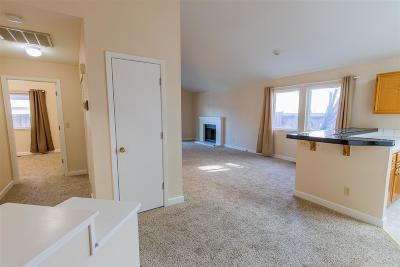 Reno Single Family Home For Sale: 1733 Shadow Park Drive