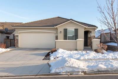Reno Single Family Home For Sale: 1125 Dutch Hollow Trail