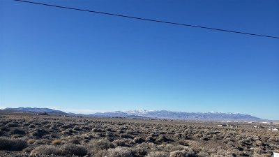 Fernley Residential Lots & Land For Sale: 1955 Gustafson
