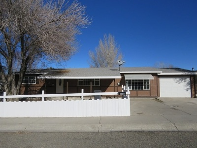 Winnemucca Single Family Home For Sale: 1105 Cosgrave #Ave