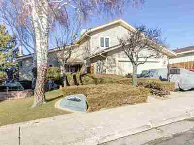 Reno Single Family Home For Sale: 3925 Skyline Blvd