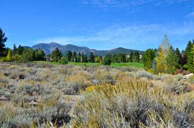 Reno Residential Lots & Land Active/Pending-Call: 6639 Gebser Court