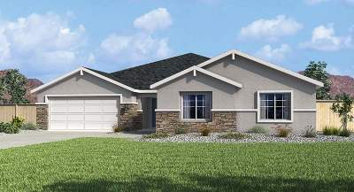 Carson City Single Family Home New: 1331 Tule Peak Circle