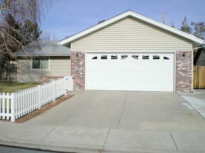 Carson City Single Family Home For Sale: 20 Tybo Circle