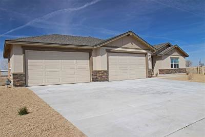 Fernley Single Family Home Active/Pending-House: 554 Saddle Horn Way