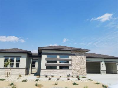 Fernley Single Family Home For Sale: 150 Snowy Plover Way