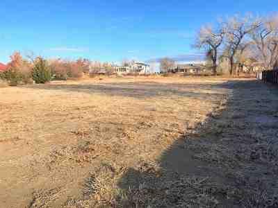 Fallon Residential Lots & Land For Sale: 1345 Venturacci Lane