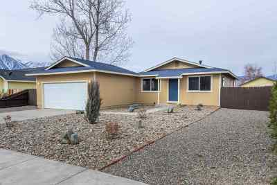 Gardnerville Single Family Home For Sale: 1324 Honeybee Lane
