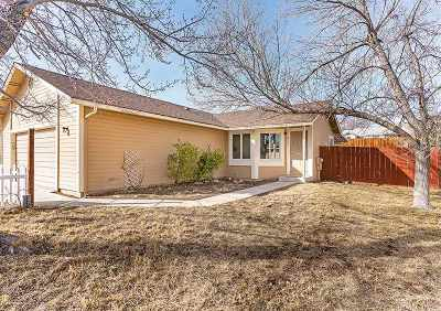 Sparks NV Single Family Home Sold: $282,000