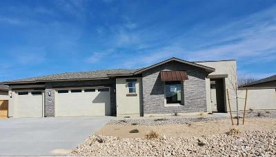 Fernley Single Family Home For Sale: 144 Snowy Plover Way
