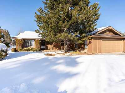 Carson City Single Family Home Price Reduced: 1050 Cabrolet Drive