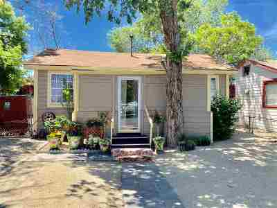 Reno Single Family Home New: 2995 Wrondel Way