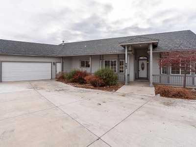Gardnerville Single Family Home New: 983 Farrier