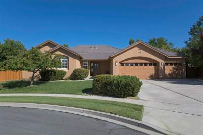 Sparks NV Single Family Home New: $539,900