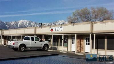 Minden NV Business Opportunity New: $579,000