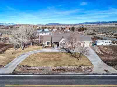 Gardnerville Single Family Home For Sale: 2346 Jacobsen Lane