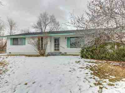 Gardnerville Single Family Home Active/Pending-Loan: 1296 Franklin Lane