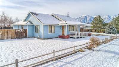 Gardnerville Single Family Home Active/Pending-Loan: 1289 Sorensen